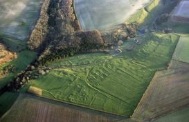 Wharram Percy air view